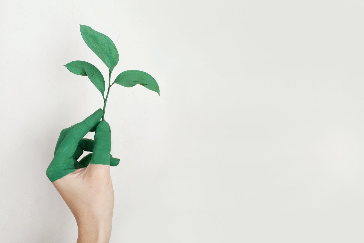 How to be more eco-friendly at school